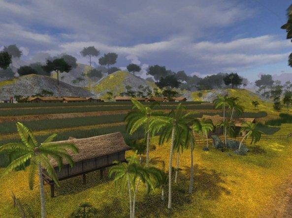 bien hoa's rice field